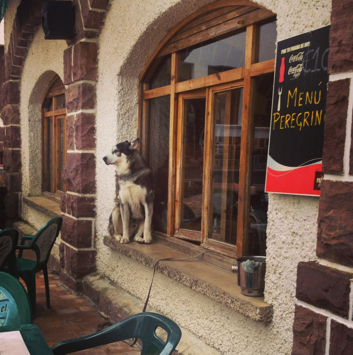 The Cafe we stopped at came with a doggy in the window.